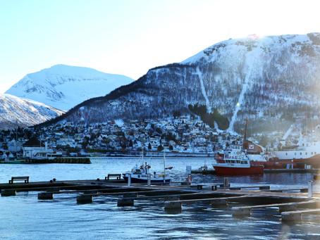 Photos : balades polaires à Tromsø