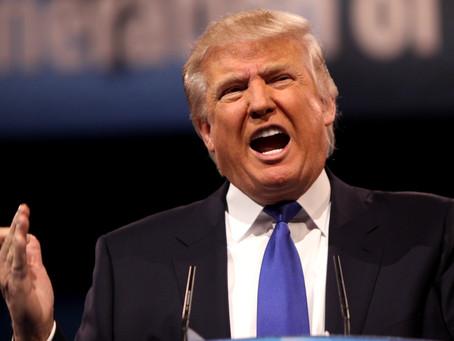 Donald Trump star d'une nouvelle série érotique gay
