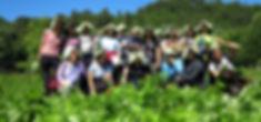 wild foods foraging tour umbria .jpg