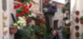 Spello Bike and wine tour.jpg