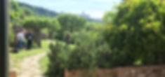 Benedictine Cloister Garden Tour Assisi.jpg