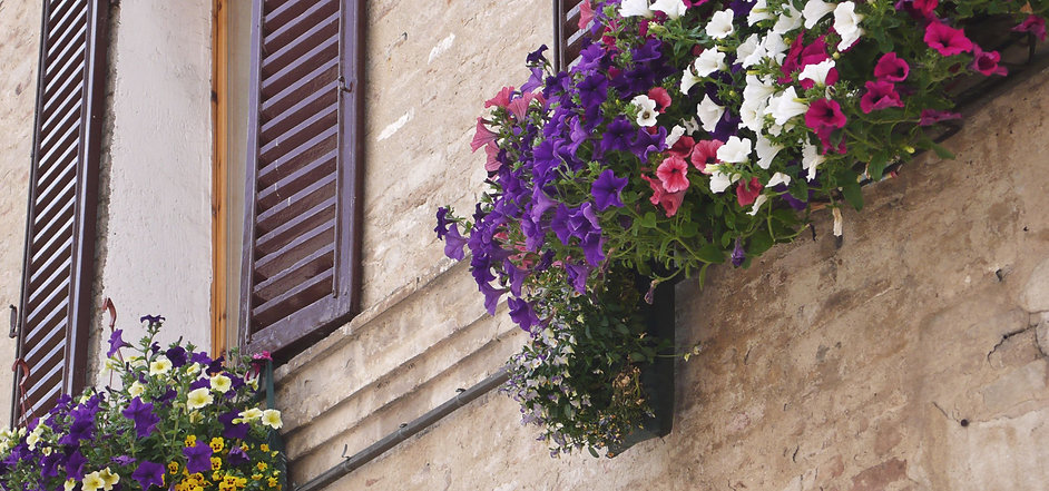 Umbria Hillotown Tour flowers wooden shu
