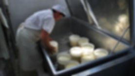 Cheese Tour Assisi Umbria Tuscany.jpg