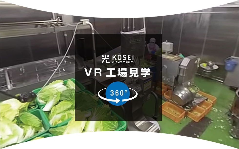 vr360.png