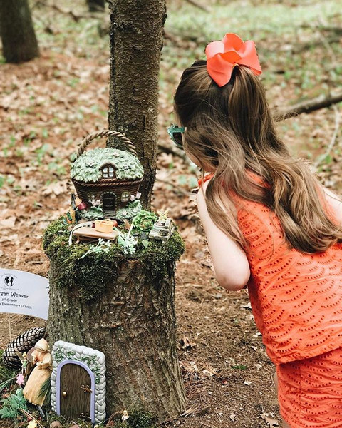 Fairy Garden and Gnome Discovery Walk