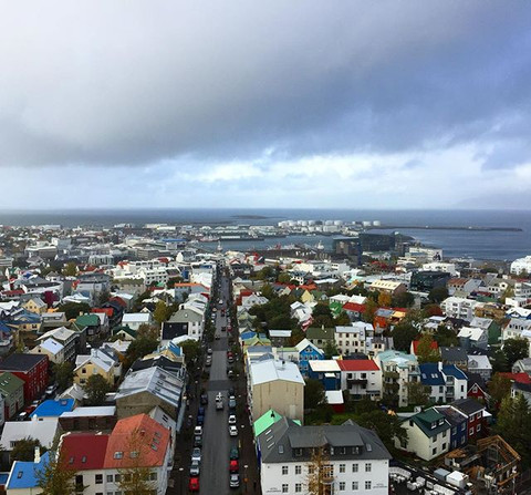 Where to Buy and Authentic Icelandic Wool Sweater in Reykjavik