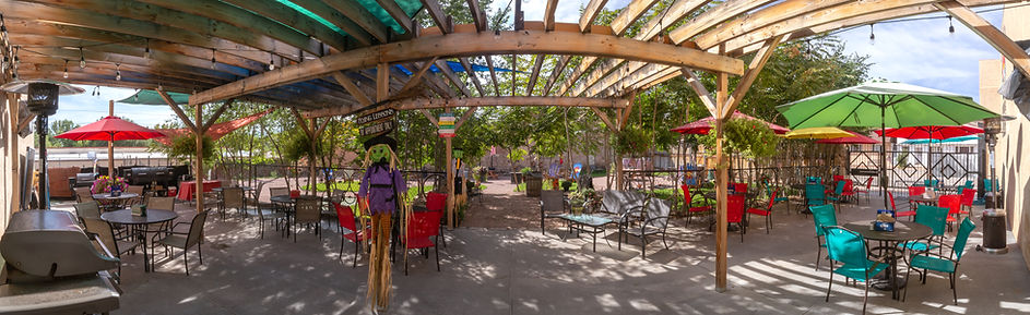 Pano Patio back activity area.jpg
