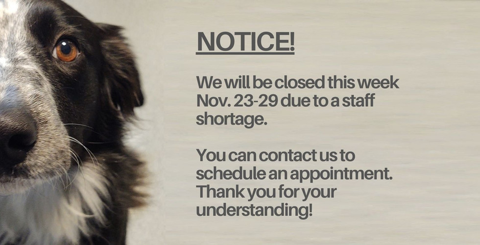 We will be closed this week due to staff