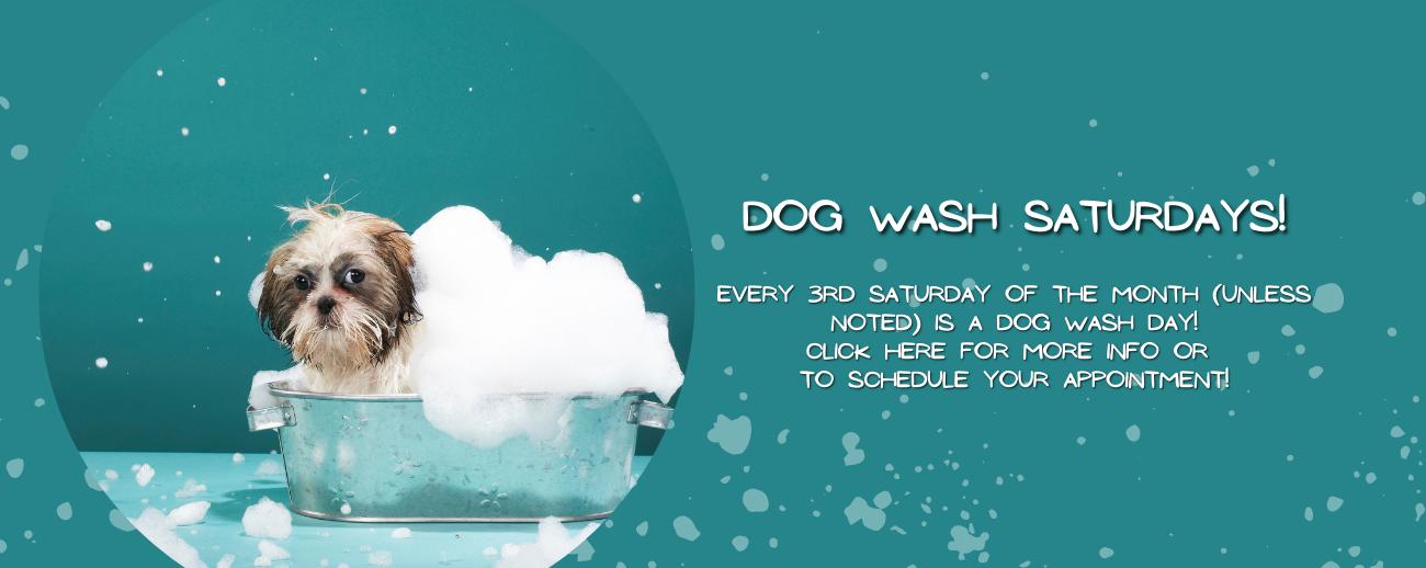 Dog Wash Saturday.png