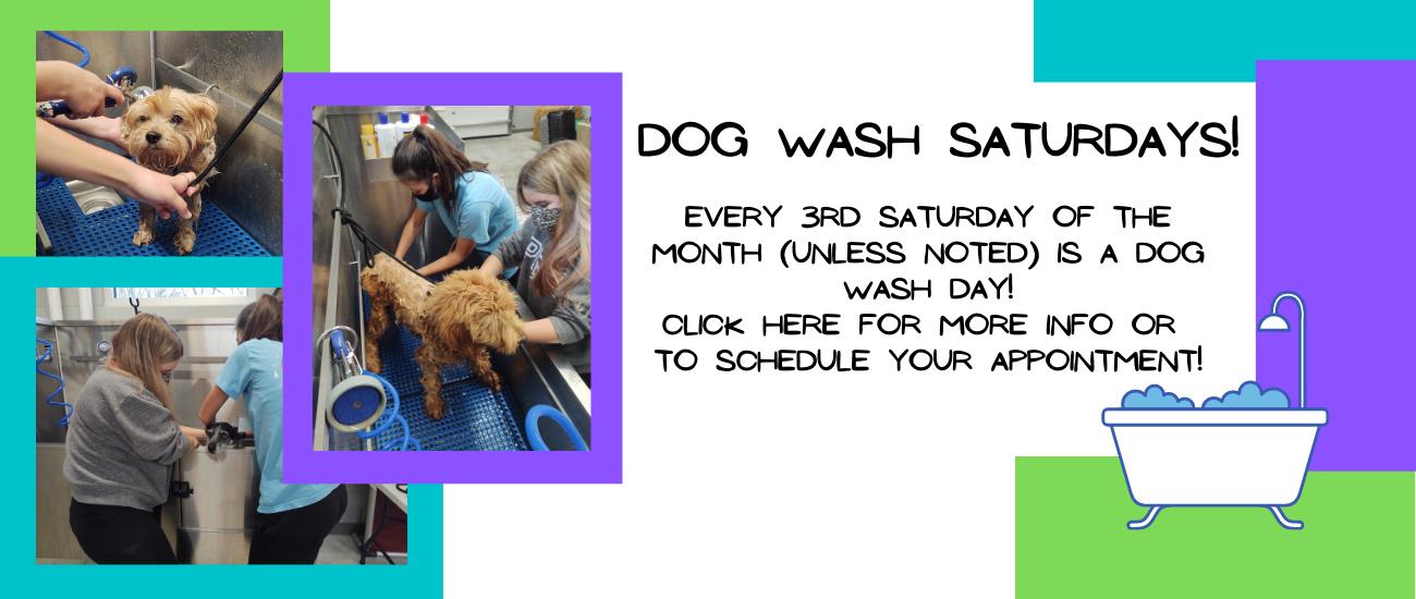 Dog Wash notice.png