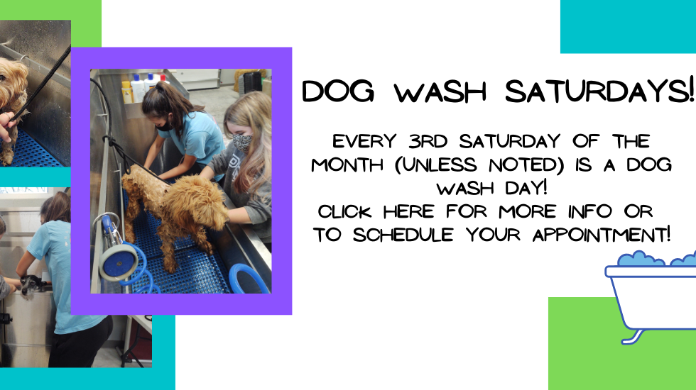Dog Wash notice.png