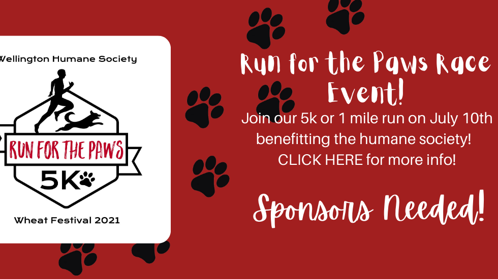 Run for the Paws Banner (1).png