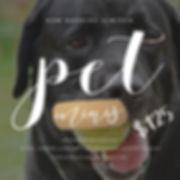 PetSession.jpg