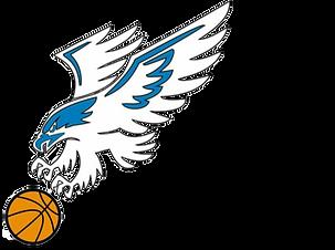 hawks logo shadow.png