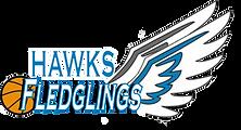 fledglings logo.png