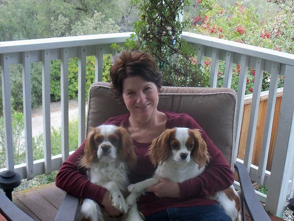 My First Cavaliers