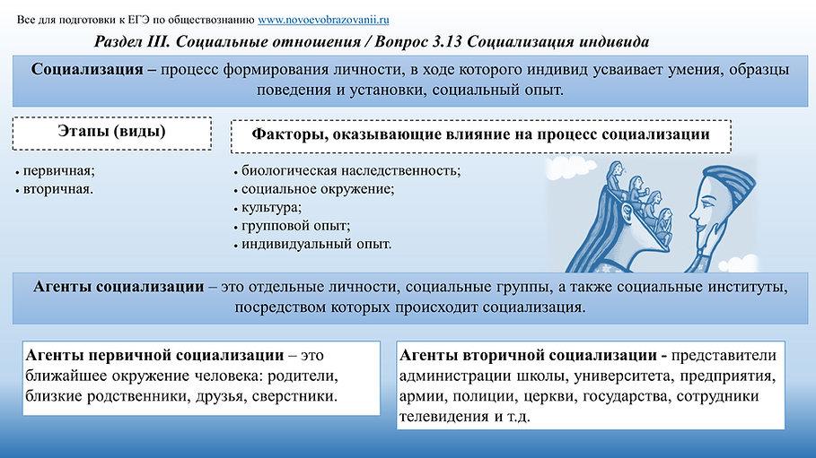 3.13 Социализация индивида.jpg