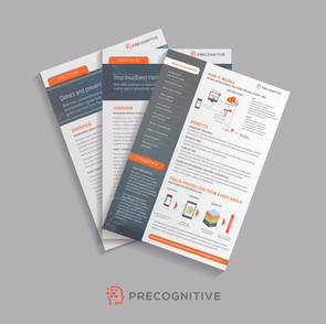 Precognitive Sellsheet Collateral