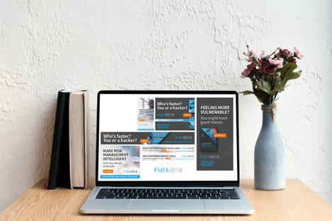 Flexera Pay-per-click Ads