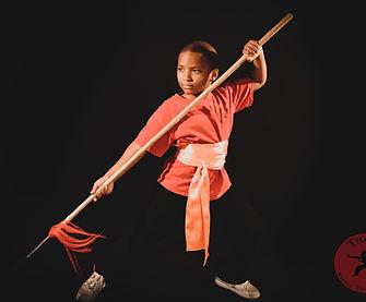 Kung Fu Harrisburg PA