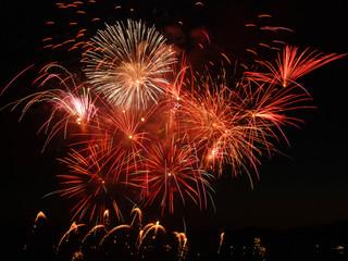 Vancouver Fireworks by Landscape Photographer Doug Matthews