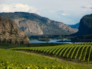 Wine Country by Landscape Photographer Doug Matthews