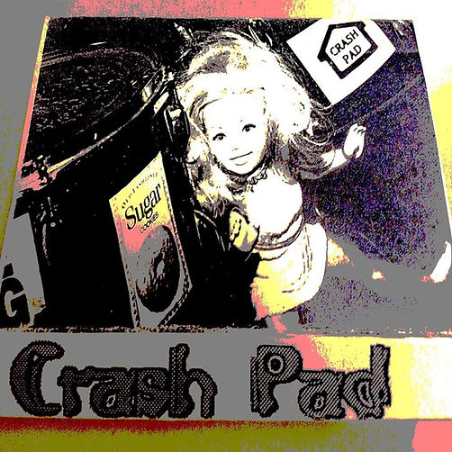 CrashPadCassetteCover.jpg