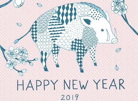 Diese Jahr ist das Jahre des  Wildschweins !