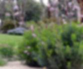 Open Garden_edited.jpg