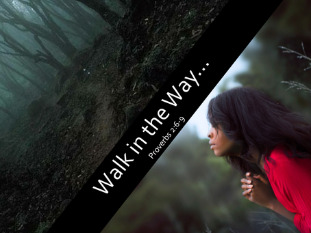 Walk in the Way