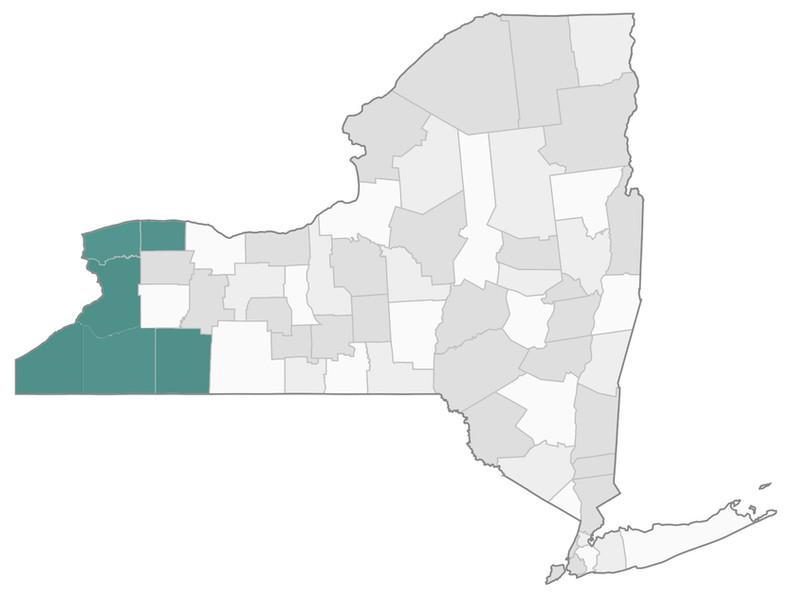 Region 1