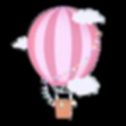 hot air ballon.png