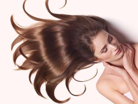 6 plantas medicinais que ajudam a manter os cabelos hidratados e saudáveis
