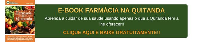 E-BOOK FARMÁCIA NA QUITANDA (2).png
