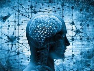 De conhecidas a exóticas: compostos naturais agem diretamente nas funções cerebrais