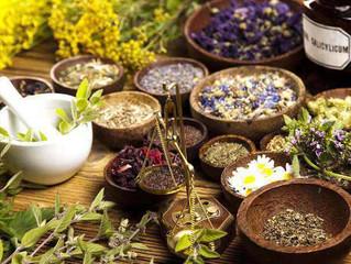 Afinal, qual a diferença entre fitoterapia e plantas medicinais?
