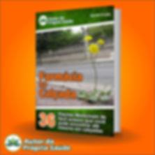 E-book Farmácia na Quitanda