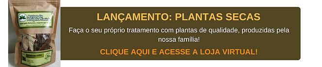 E-BOOK FARMÁCIA NA QUITANDA (1).png