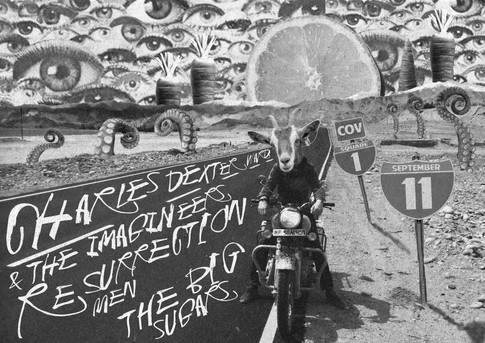Charles Dexter Ward & The Imagineers /Resurrection Men/The Big Sugars