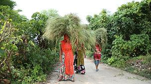 Veiled women bearing burdens.JPG