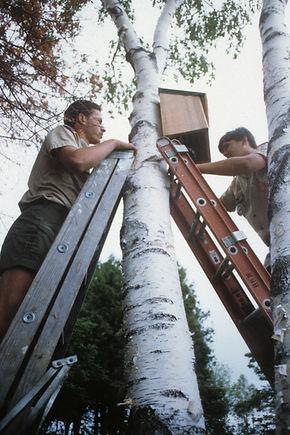 St Helena Boy Scouts - Moehl - 75.jpg