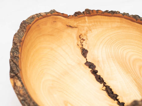 White Oak Bowl Wood collected from York, PA