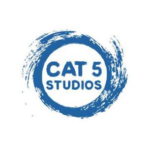 Cat_5_LARGE.jpg