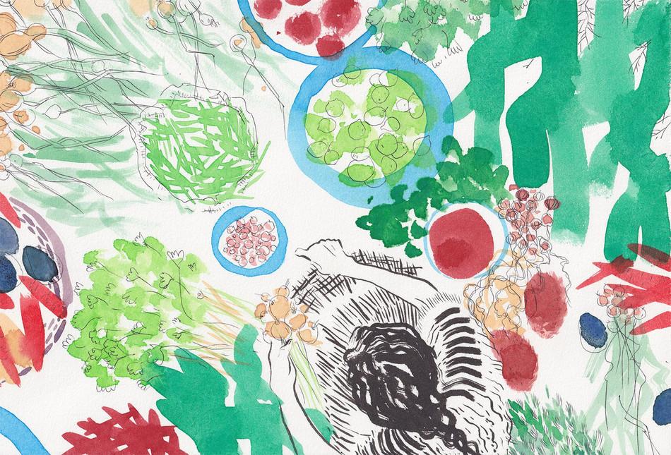Herbes, fruits, légumes