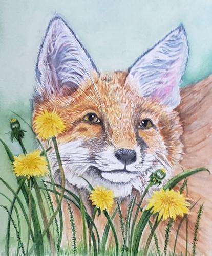 Fox Among Weeds