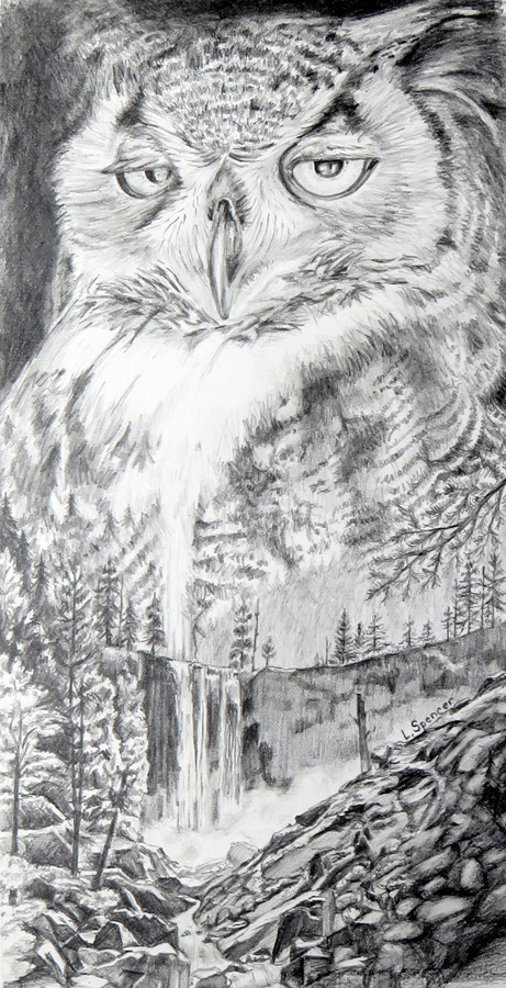Owlfalls - 2nd Place Drawing