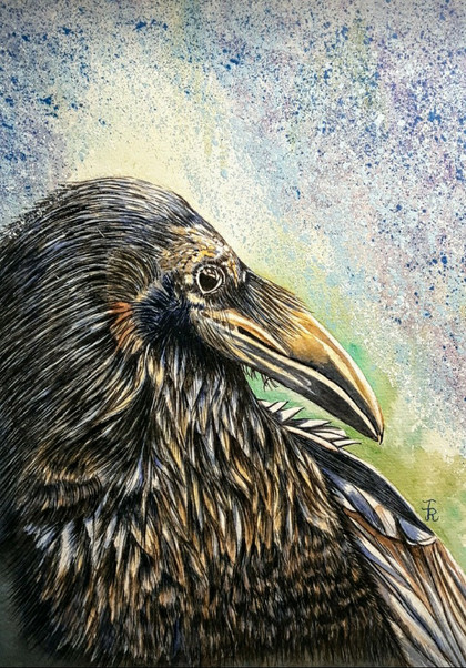 James (the Crow)