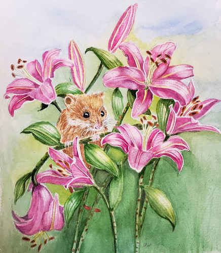 Hiding in the Lilies