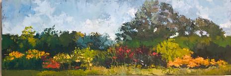 Summer Garden -Emile Gaucher Memorial Award