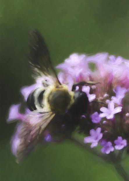 Painterly Bee